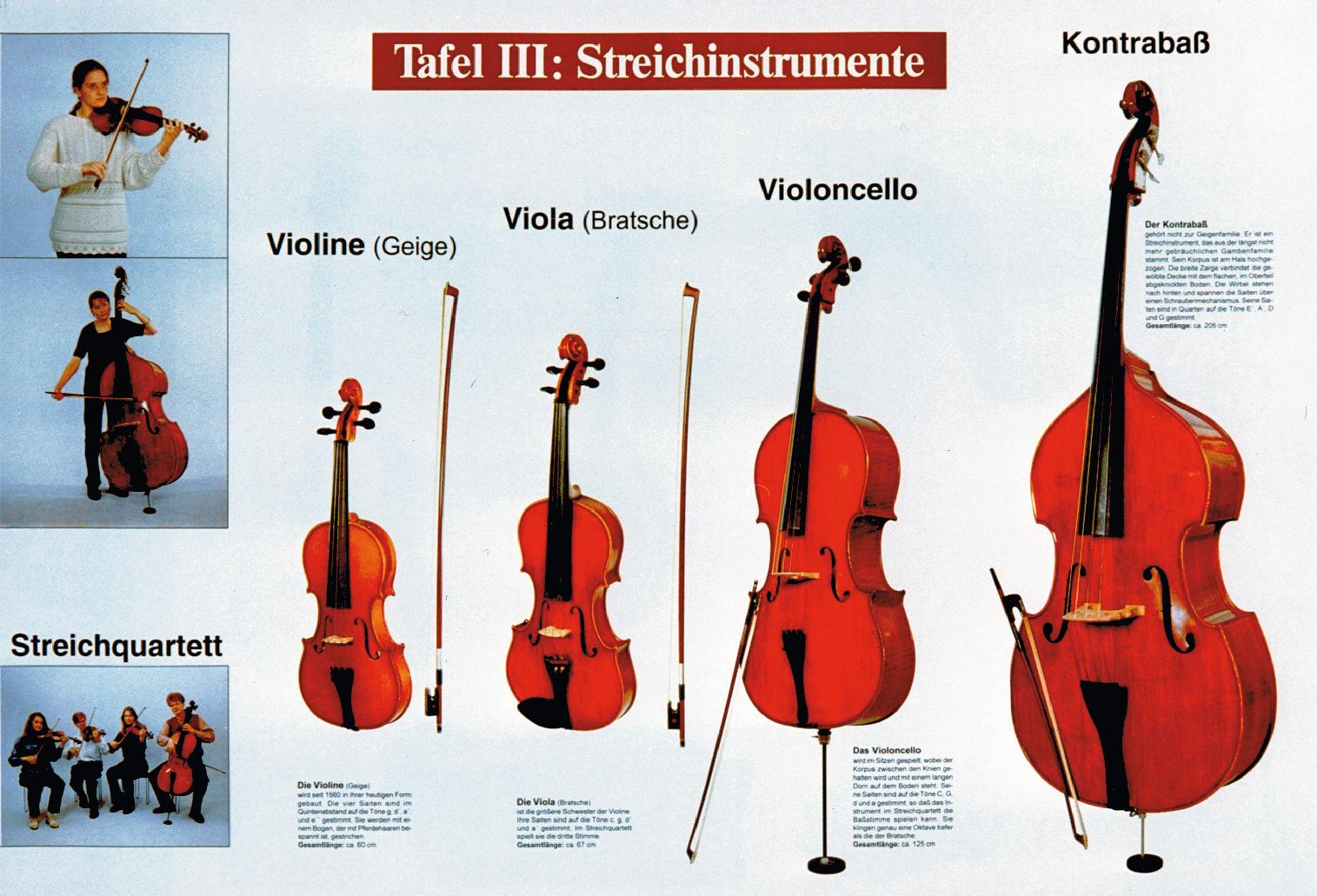Tafel 3: Streichinstrumente | LMS Lehrmittel-Service H.Späth GmbH