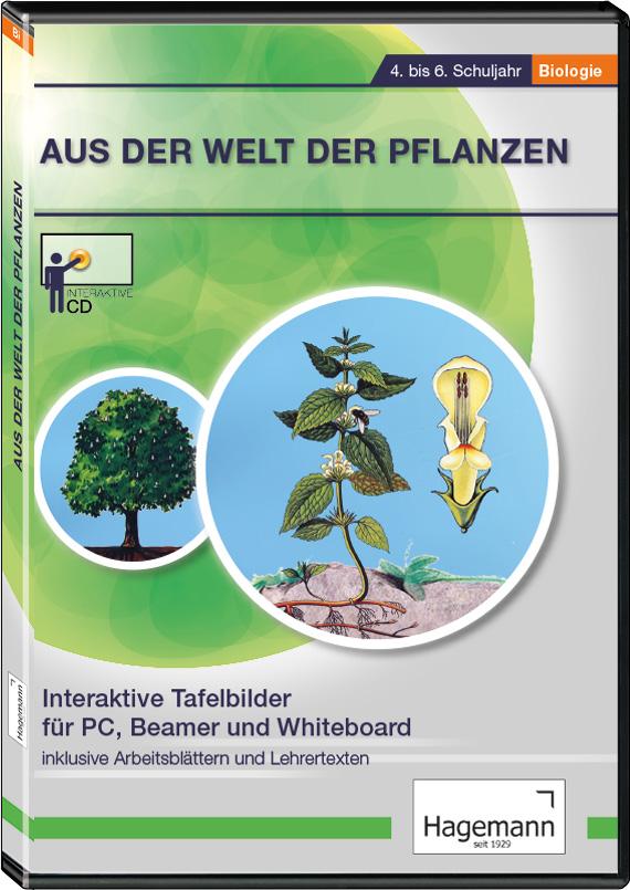 Tafelbilder für Whiteboard & Beamer | Biologie | Unterrichtsfächer ...